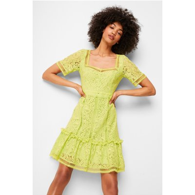 Amisha Lace Panelled Dress - lime punch