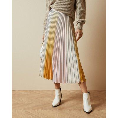 Ombré Pleated Skirt