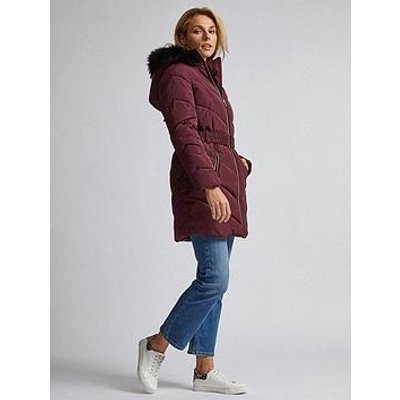 Dorothy Perkins Luxe Short Padded Jacket - Burgundy