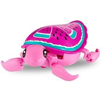 Little Live Pets Turtle- Styles May Vary