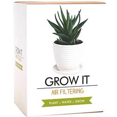 Gift Republic Air Filtering Grow Your Own Plant