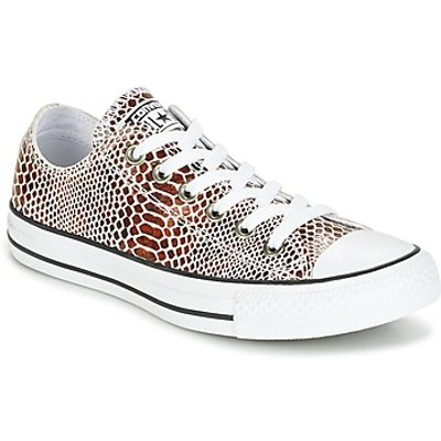 Converse  CHUCK TAYLOR ALL STAR FASHION SNAKE OX BROWN BLACK WHITE  women s Shoes  Trainers  in Brown - 888754737966