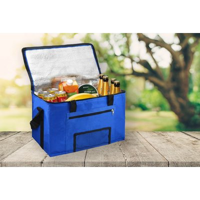 5 99 instead of   19 99 for a 28L picnic cooler bag from Fusion Homeware   save 70  - 579