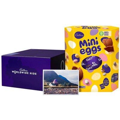 Cadbury Mini Eggs WWH Easter Egg