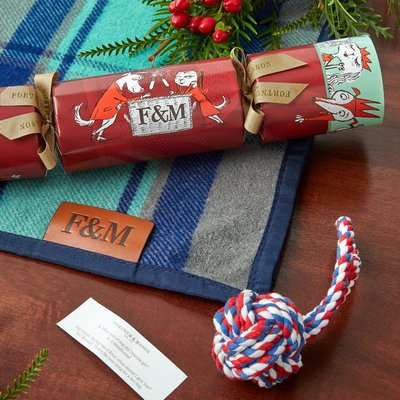 Fortnum & Mason The Dog's Christmas Cracker