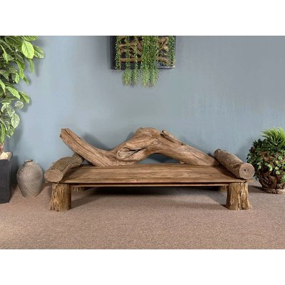 Jungle Root Bench