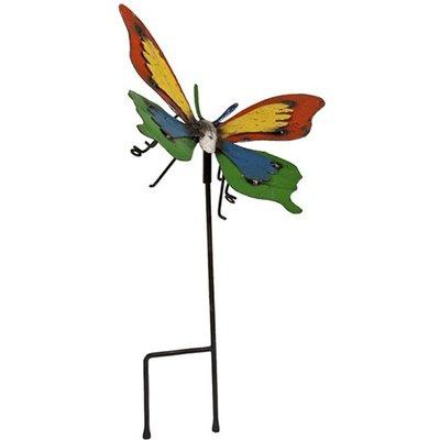 Barnyard Ulysses Butterfly
