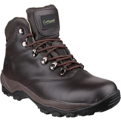 Cotswold Womens Winstone Boot in Brown