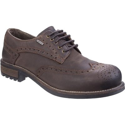 Cotswold Mens Oxford Leather Shoe in Brown
