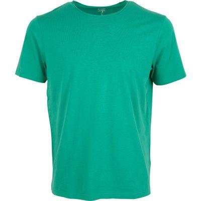 Olymp T-Shirt 566032   OLYMP SALE