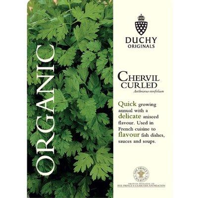 Chervil (Curled) - Duchy Originals Organic Seeds