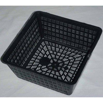 Square Aquatic Planting Basket 20cm / 2.5 litre