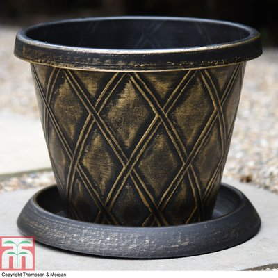 Large Patio Pot