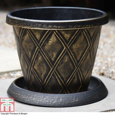 Small Patio Pot