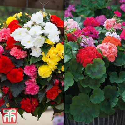 Garden Ready Duo Collection