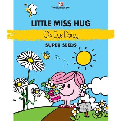 Little Miss Hug - Ox-Eye Daisy