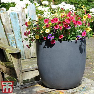 Fibre Clay Anthra Round Pot Set