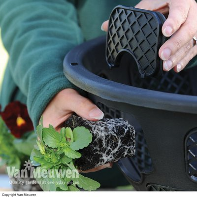 Easy-Fill Hanging Baskets