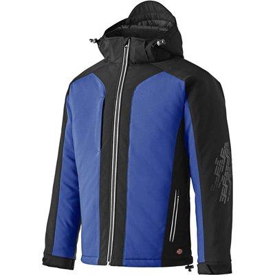 Dickies Mens Winter Softshell Jacket Royal Blue / Black S
