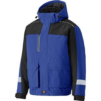 Dickies Mens Winter Jacket Royal Blue / Black S