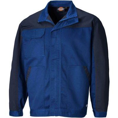 Dickies Mens Everyday Jacket Royal Blue 2XL