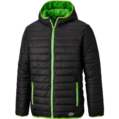 Dickies Mens Stamford Puffer Jacket Black / Lime L