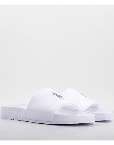 Novita Bianco uomo Slider bianche con logo blu navy - Polo Ralph Lauren - Bianco