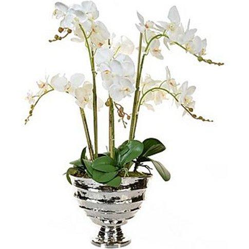 Orchid Bamburgh Vase - White - By Furniture Village