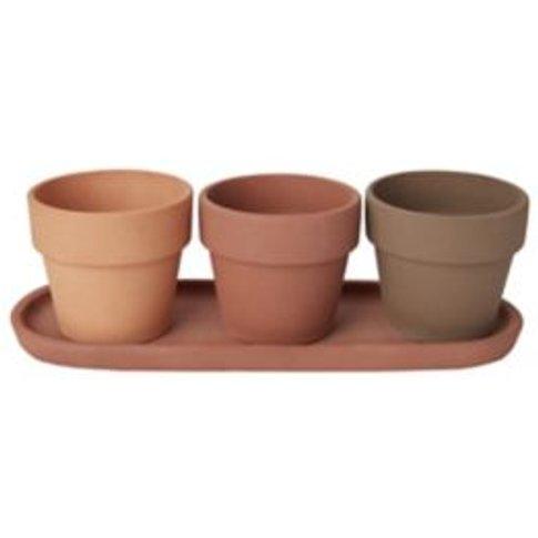 Terracotta Terracotta Plant Pot (Dia)10.9cm  Set