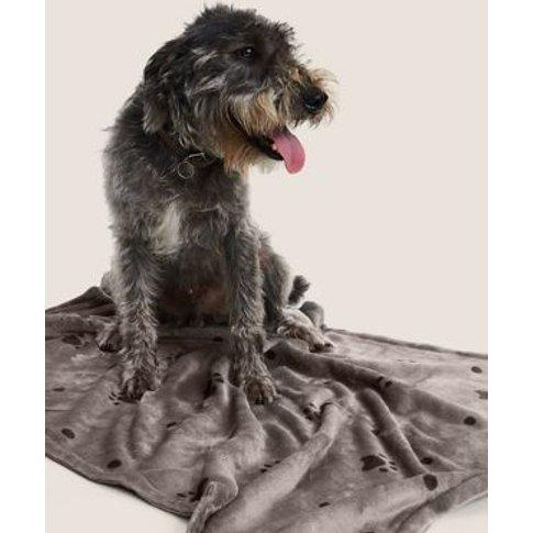 M&S Paw Pattern Pet Blanket - 1size - Beige, Beige
