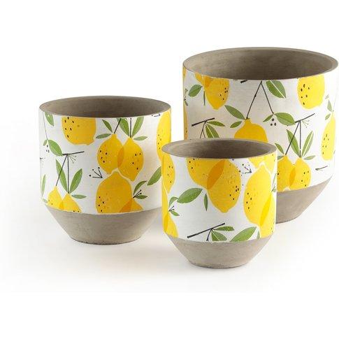 Zestie Lemon Print Concrete Plant Pots (set of 3)