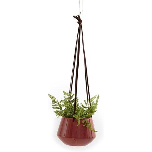 Antorre Hanging Plant Pot