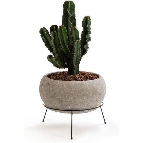 Ollam Cement Plant Pot