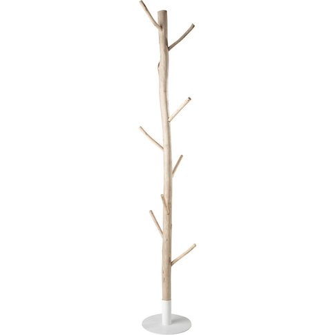 Eucalyptus And White Metal Tree Trunk Coat Stand