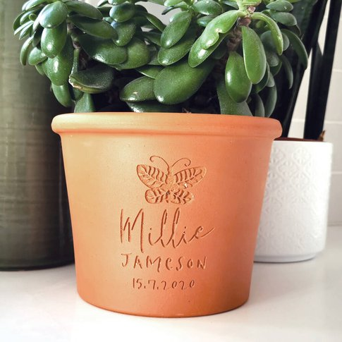Engraved Butterfly Plant Pot
