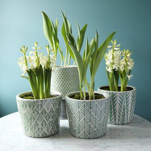 Large Green Patterned Plant Pot