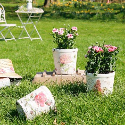 Set Of Three Botanical Rose Plant Pots