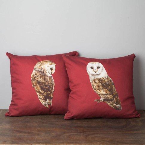 Pair Of Barn Owl Cushions