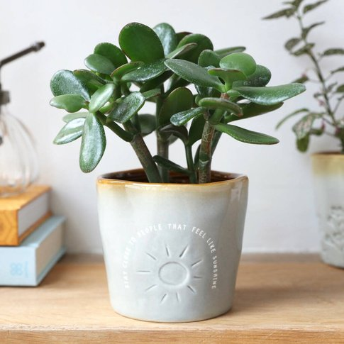 Glazed Ombré 'Sunshine Friends' Planter