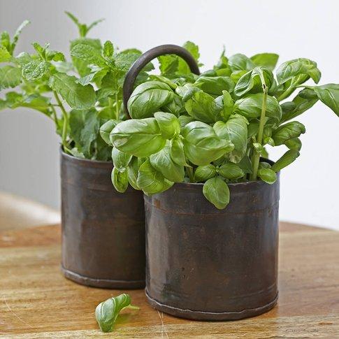 Vintage Metal Herb Or Plant Pot