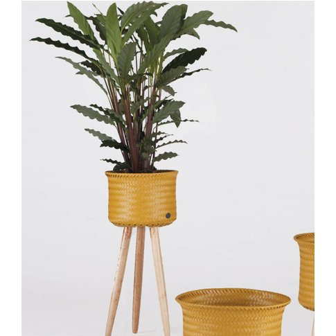 Handwoven Basket Planter With Wooden Feet