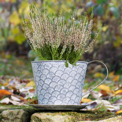 Scalloped Vintage Grey Tea Cup Planter