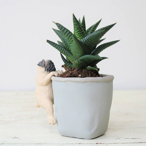 Cement Planter And Puppy Pot Hanger Gift Set