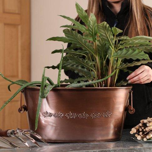 Large Personalised Copper Botanical Planter