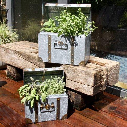 Zinc Trunk Planters Set Of Two