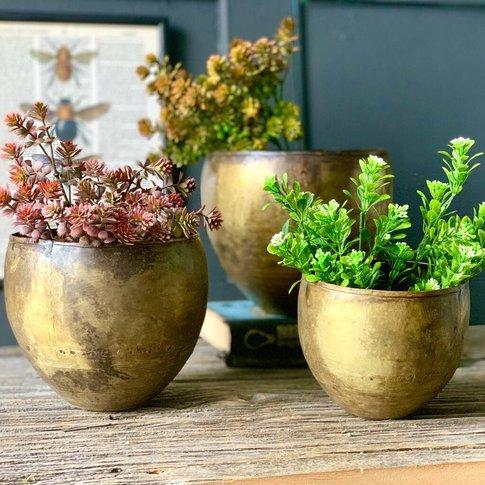 Set Of Three Antique Brass Kew Planters