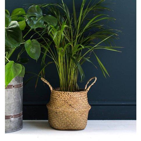 Natural Seagrass Basket Or Planter