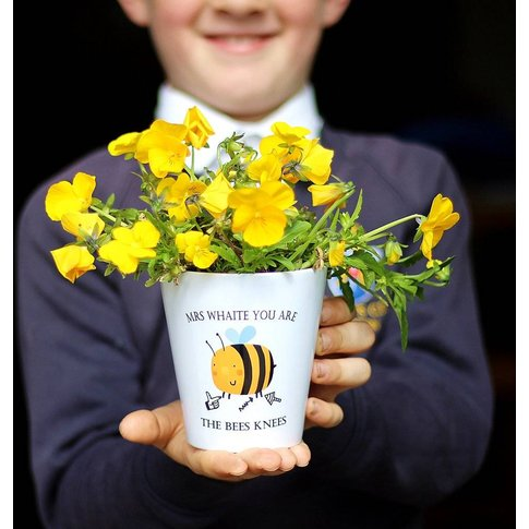 You Are The Bees Knees Teacher Plant Pot