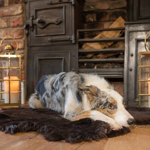 Luxury Sheepskin Pet Blanket