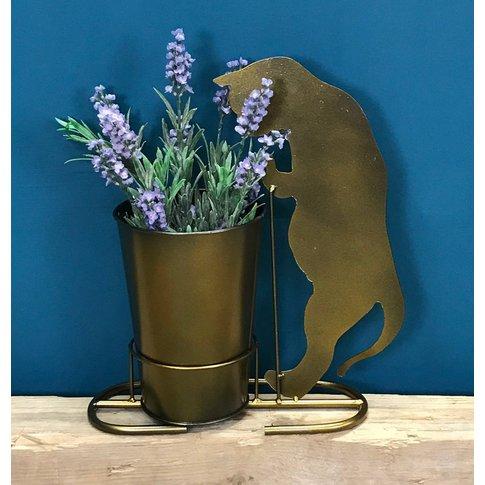 Curious Cat Plant Pot